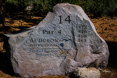 Old Greenwood-940239 (Jeffrey Balfus (thx for 5,000,000 views)) Tags: oldgreenwood sonyalpha tahoe golf truckee california unitedstatesofamerica numbers