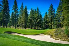 Old Greenwood-940237 (Jeffrey Balfus (thx for 5,000,000 views)) Tags: oldgreenwood sonyalpha tahoe golf truckee california unitedstatesofamerica