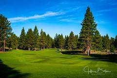 Old Greenwood-940140 (Jeffrey Balfus (thx for 5,000,000 views)) Tags: oldgreenwood sonyalpha tahoe golf truckee california unitedstatesofamerica