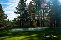 Old Greenwood-940152 (Jeffrey Balfus (thx for 5,000,000 views)) Tags: oldgreenwood sonyalpha tahoe golf truckee california unitedstatesofamerica