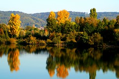 Herbst an der Donau (johannroehrle) Tags: herbst wasser water automne autumn autunno a58 sony deutschland donau danube donarea dunaj bayern bäume
