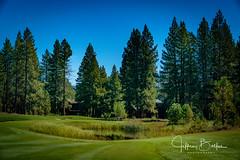 Old Greenwood-940243 (Jeffrey Balfus (thx for 5,000,000 views)) Tags: oldgreenwood sonyalpha tahoe golf truckee california unitedstatesofamerica