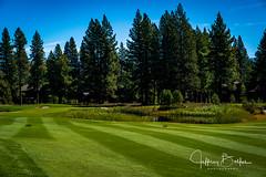 Old Greenwood-940242 (Jeffrey Balfus (thx for 5,000,000 views)) Tags: oldgreenwood sonyalpha tahoe golf truckee california unitedstatesofamerica