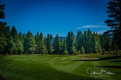 Old Greenwood-940241 (Jeffrey Balfus (thx for 5,000,000 views)) Tags: oldgreenwood sonyalpha tahoe golf truckee california unitedstatesofamerica