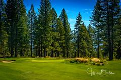 Old Greenwood-940238 (Jeffrey Balfus (thx for 5,000,000 views)) Tags: oldgreenwood sonyalpha tahoe golf truckee california unitedstatesofamerica