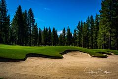 Old Greenwood-940235 (Jeffrey Balfus (thx for 5,000,000 views)) Tags: oldgreenwood sonyalpha tahoe golf truckee california unitedstatesofamerica