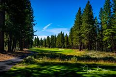 Old Greenwood-940234 (Jeffrey Balfus (thx for 5,000,000 views)) Tags: oldgreenwood sonyalpha tahoe golf truckee california unitedstatesofamerica