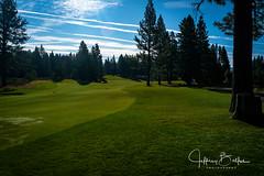 Old Greenwood-940145 (Jeffrey Balfus (thx for 5,000,000 views)) Tags: oldgreenwood sonyalpha tahoe golf truckee california unitedstatesofamerica