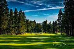 Old Greenwood-940147 (Jeffrey Balfus (thx for 5,000,000 views)) Tags: oldgreenwood sonyalpha tahoe golf truckee california unitedstatesofamerica