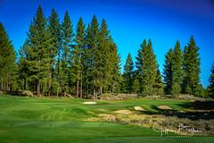 Old Greenwood-940150 (Jeffrey Balfus (thx for 5,000,000 views)) Tags: oldgreenwood sonyalpha tahoe golf truckee california unitedstatesofamerica