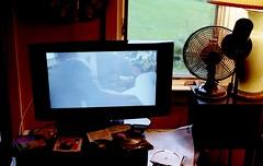 tv (bluebird87) Tags: tv film kodak ektar epson v600 dx0 c41 nikon f100