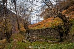 A mitad de camino (SantiMB.Photos) Tags: 2blog 2tumblr 2ig valdetoran valldaran valdaran pirineos pyrenees lleida otoño autumn fuente fountain pradet geo:lat=4281958701 geo:lon=080838941 geotagged santjoandetoran cataluna españa