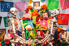 Put It Another Way (Thomas Hawk) Tags: america bayarea california eastbay museum omca oakland oaklandmuseum oaklandmuseumofcalifornia sfbayarea usa unitedstates unitedstatesofamerica westcoast norcal sculpture skeleton