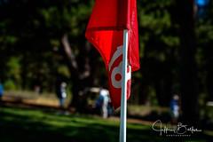 Old Greenwood-940262 (Jeffrey Balfus (thx for 5,000,000 views)) Tags: oldgreenwood sonyalpha tahoe golf truckee california unitedstatesofamerica numbers
