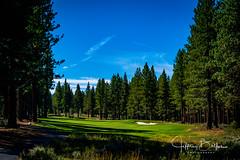 Old Greenwood-940233 (Jeffrey Balfus (thx for 5,000,000 views)) Tags: oldgreenwood sonyalpha tahoe golf truckee california unitedstatesofamerica