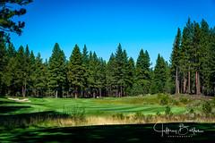 Old Greenwood-940232 (Jeffrey Balfus (thx for 5,000,000 views)) Tags: oldgreenwood sonyalpha tahoe golf truckee california unitedstatesofamerica