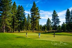 Old Greenwood-940142 (Jeffrey Balfus (thx for 5,000,000 views)) Tags: oldgreenwood sonyalpha tahoe golf truckee california unitedstatesofamerica