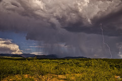 Strolling Along (Steven Maguire Photography) Tags: arizona monsoon mulemountian cochisecounty skyscape southwest landscape lightning