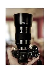 SONY A7RIII (hoffler_pictorials) Tags: sony6400 sigmalens camera 135mm batis a7riii sony