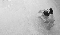 Summertime (Tomás Hornos) Tags: nikon d3200 blancoynegro blackandwhite blackwhite agua piscina nadar verano summer summertime showfoto digikam