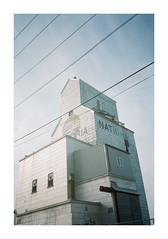 Pacific Ave, more or less (jellygeist) Tags: kodak portra400 kodakportra400 olympus olympusxa rangefinder analog film 35mm 35 35mmfilm