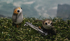 Hot Toys Porgs (dorklordcollectibles) Tags: hottoys actionfigure toy onesixth onesixthscale toyphotography sonya6000 a6000 starwars porg thelastjedi