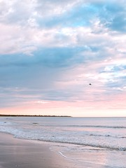Free (Bron.Wolff) Tags: capture morning queensland yeppoon soft clouds cloudscape sky sand nature landscape ocean water seascape sea bird