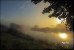 Mist And Fog Patches. (Picture post.) Tags: landscape nature green autumn mist water trees sunrise reflections bluesky paysage arbre eau brume