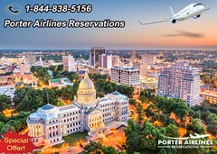 Top Cities to Take a Literary Tour in The United States (reservationsporterairlines) Tags: porterairlines porterairlinesreservations porterairlinesofficialsite porterairlinesflights porterairlinesdeals porterairlinesphonenumber