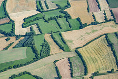 Hedges In Upper Franconia (Aerial Photography) Tags: by kc ofr 03082003 brown color germany bayern deutschland bavaria landwirtschaft feld aerial grün braun agriculture landschaft farbe p2 luftbild luftaufnahme hecke hecken landschaftnatur kulturlandschaft landscapeandnature ackerbau marktrodach unterrodach heckenlandschaft flurform fotoklausleidorfwwwleidorfde fotoklausleidorfwwwleidorfaerialcom d6033960 colour verde green nature field landscape outdoor hedge cultural hedges bayernbavaria deutschlandgermany landscapenature cultivatedlandscape openfieldtype hedgerowcountry marktrodachlkrkronach