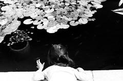 Poissons (Ludovic Macioszczyk Photography) Tags: poissons nikon f2 135 ilford hp5 plus 400 iso pushed 800 août 2019 © ludovic macioszczyk louise jardin de lévêché photomic black white noir et blanc monochrome contrastes life light outside extérieur mm tag world monde earth asa film pellicule flickr argentique analog lumière grain 35mm photography négatif limoges ville city nikkor 50mm france slr