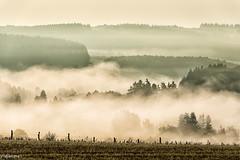 16092019-DSC_0063 (vidjanma) Tags: brume dzovâ vallée
