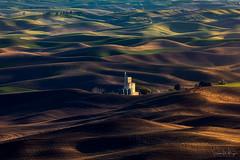 Late Season (SharonWellings) Tags: palouse washingtonstate wheat fields harvest seasons usa america farming sunset