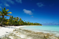 20190911-61-Coconut palms over shite sand beach on One Foot Island (Tapuetai) (Roger T Wong) Tags: 2019 aitutaki cookislands onefootisland pacific pacificisland rogertwong sel24105g sony24105 sonya7iii sonyalpha7iii sonyfe24105mmf4goss sonyilce7m3 tapuetai beach blue coconut holiday isalnd lagoon sand sea sky travel water white