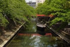大垣 - Ogaki (Hachimaki123) Tags: 日本 japan 岐阜 gifu 岐阜県 ogaki 大垣 大垣市 paisaje landscape