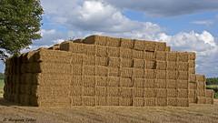 Giant Haystack (margaretc1946) Tags: haystack harvest cotswolds pentaxk3 sigma18300mmlens