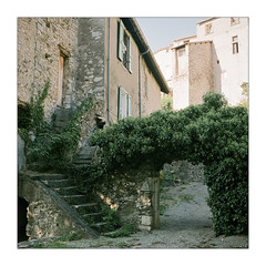 Sisteron, Place of Poets (Thomas Listl) Tags: houses plants color 6x6 tlr film analog mediumformat square mood fuji place analogue af yashica nomansland av sisteron yashicamat124g filmphotography pro400h thomaslistl light 120 architecture stairs ngc atmosphere poetic romantic andtheromantics