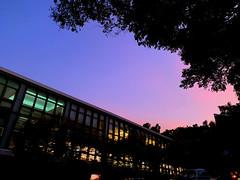 Beautiful sky 1080919 (#Esther) Tags: campus 大學 daily sky bluesky college blue