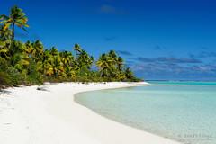 20190911-63-Coconut palms over shite sand beach on One Foot Island (Tapuetai) (Roger T Wong) Tags: 2019 aitutaki cookislands onefootisland pacific pacificisland rogertwong sel24105g sony24105 sonya7iii sonyalpha7iii sonyfe24105mmf4goss sonyilce7m3 tapuetai beach blue coconut holiday isalnd lagoon sand sea sky travel water white