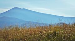 Mont Ventoux depuis les Dentelles de Montmirail... Reynald ARTAUD (Reynald ARTAUD) Tags: 2019 fin août occitanie provence mont ventoux dentelles montmirail reynald artaud