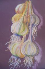Pastel Garlic Braid (SandraNestle) Tags: pastels sandranestle art originalart designsofnature drawing