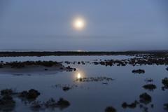 Moon and Fog (blachswan) Tags: moon fog mitrelake victoria australia