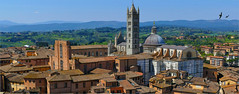 Sienne, mon Mardi ! (Le.Patou) Tags: challengesurflickr city bookmark italie italy italia toscane tuscany toscana siena fz1000 town panorama roof cathedral old pano cof077mark cof077manoo cof077mari cof077nic0 cof077dmnq cof077chri