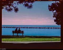 "The Bench ""where lovers 💕 meet (Uta_kv) Tags: 120mmfilm mediumformatcamera film fujinonlens fujica fujifilm rangefinder 6x7 blueocean bythebeach epsonv550 provia100f 6x7format fujicagm670 texasleica e6 homedeveloped"