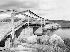 Ellinge Lyng, Korevlerne, Denmark (ako_law) Tags: 320asa 645 6x45 epsonperfectionv850pro ilfordhp5 mamiya mamiya645 mediumformat mittelformat perceptol perceptol11 pull selbstentwickelt selfdeveloped vig seeland dänemark