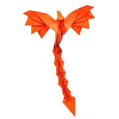 Little Phoenix - Lao Zhu Yao (Mariano Zavala B) Tags: little phoenix lao zhu yao fénix tutorial origami satoshi kamiya
