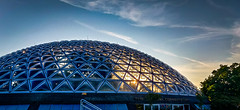 Outside the Dome (Los Paseos) Tags: bloedelconservatory vancouver britishcolumbia