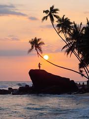 Sunset in Sri Lanka (TeunJanssen) Tags: beach landscape palmtrees palm sunset ocean rock sky srilanka unawatuna dawella clouds travel traveling worldtravel backpacking asia southeastasia m43 olympus omd omdem10