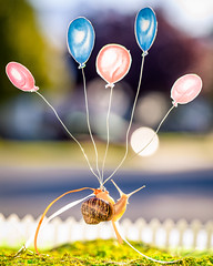 adventure is out there (auntneecey) Tags: balloons snail texture 2lilowls snailtales floaton adventureisoutthere thesecretlifeofsnails 365the2019edition 3652019 day262365 19sep19