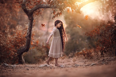 Balance ({jessica drossin}) Tags: jessicadrossin profile girl kid child leaf leaves pretty light flare branch warm autumn fall hair long dress wwwjessicadrossincom actions overlays